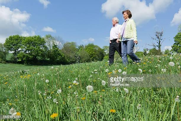 Altes Paar walking auf blühenden Wiese im Frühling (XXXL