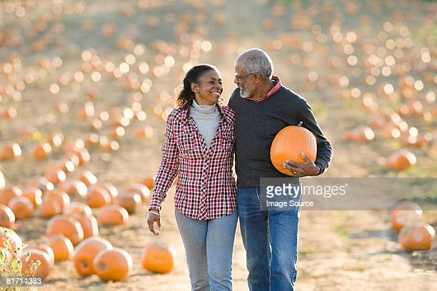 a senior couple walking through a field of pumpkins - fall harvest stock pictures, royalty-free photos & images