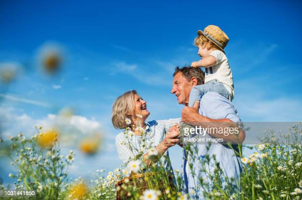 A senior couple with a toddler boy spending time in nature at sunset in summer.
