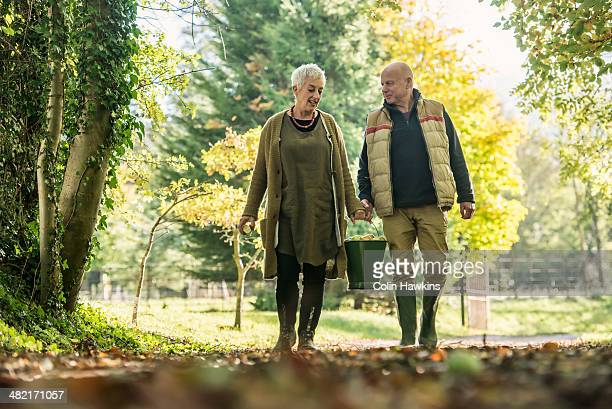 Senior couple with bucket of apples in orchard