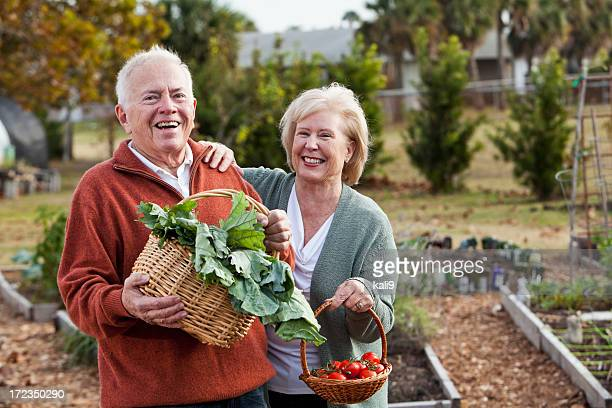 Senior couple with vegetables harvested from garden
