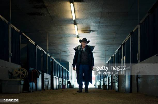 senior cowboy at a horse stable - one mature man only stock pictures, royalty-free photos & images