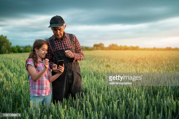 senior farmer and his granddaughter using smart phone outdorrs in field. - rural scene stock pictures, royalty-free photos & images