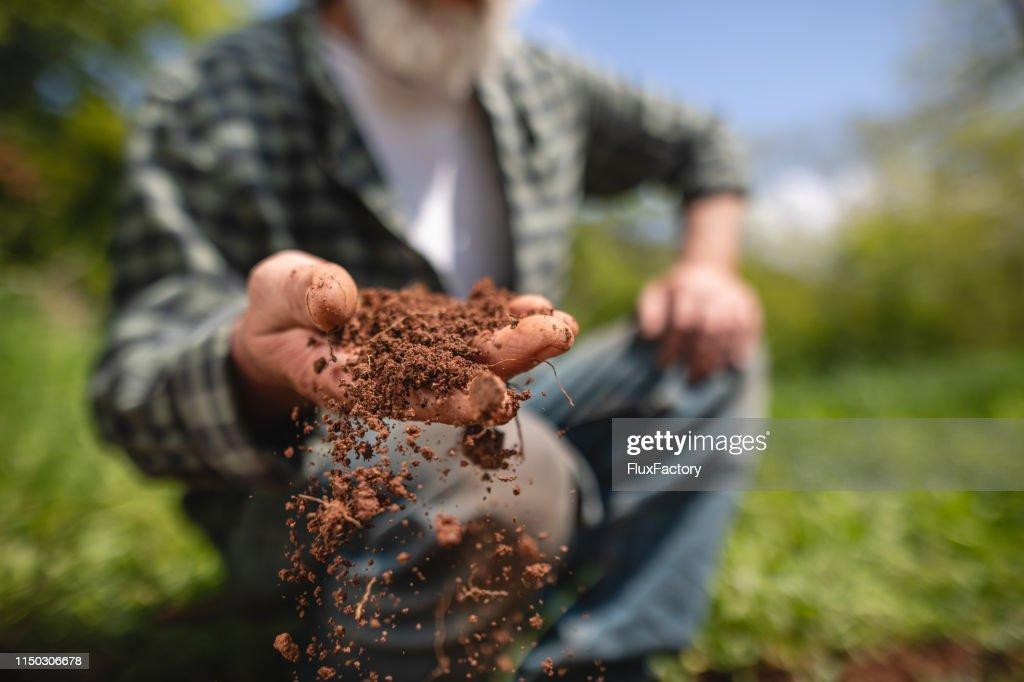 Agricoltore anziano che esamina la terra nella sua fattoria : Foto stock