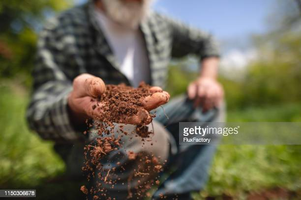 senior farmer examining earth on his farm - dirt stock pictures, royalty-free photos & images