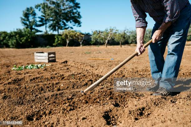 senior farmer plowing the ground - get your hoe ready stock pictures, royalty-free photos & images