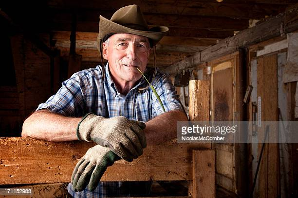 senior farmer resting in his barn - work glove stock pictures, royalty-free photos & images