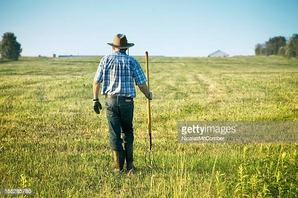 Senior agriculteur à pied dans son domaine Vue de dos