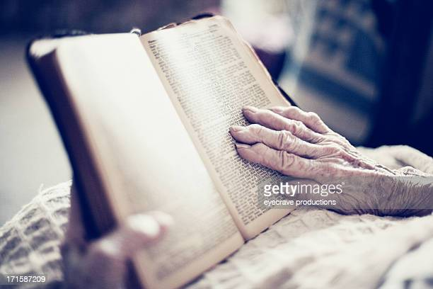 senior female elderly woman reading bible - over 100 stock photos and pictures