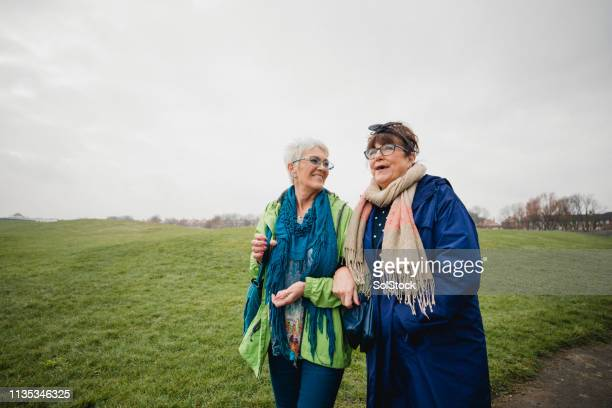 senior female friends taking a walk in the park - care stock pictures, royalty-free photos & images