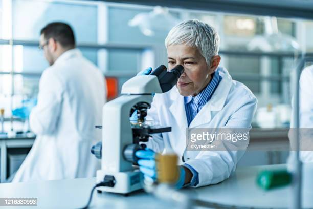 senior female scientist working on a microscope in laboratory. - science stock pictures, royalty-free photos & images