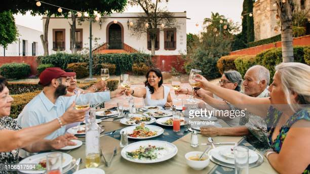 senior friends at garden party reunion - mexican ethnicity stock pictures, royalty-free photos & images