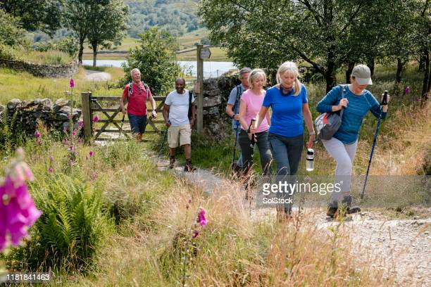 senior friends out walking in the lakes - group of people stock pictures, royalty-free photos & images