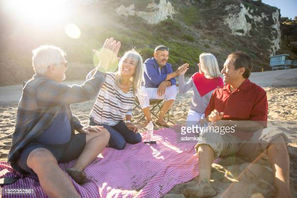 senior friends playing games at picnic - friendly match stock pictures, royalty-free photos & images