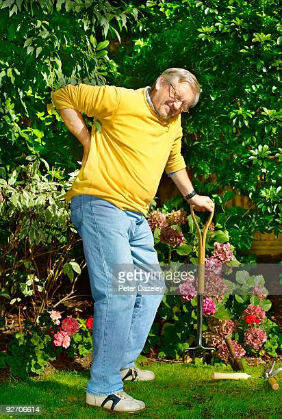 senior gardener with backache  - herniated disc stock pictures, royalty-free photos & images