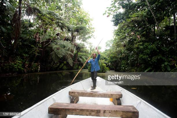 senior guarani man oaring in canoe at napo river, ecuador - south america stock pictures, royalty-free photos & images