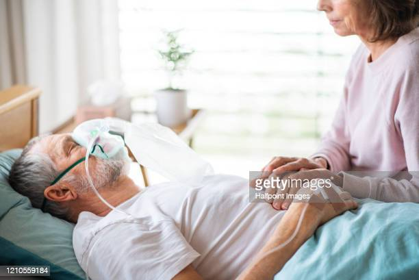 a senior ill man in hospital bed, his wife holding his hand. - hospital ventilator stock pictures, royalty-free photos & images