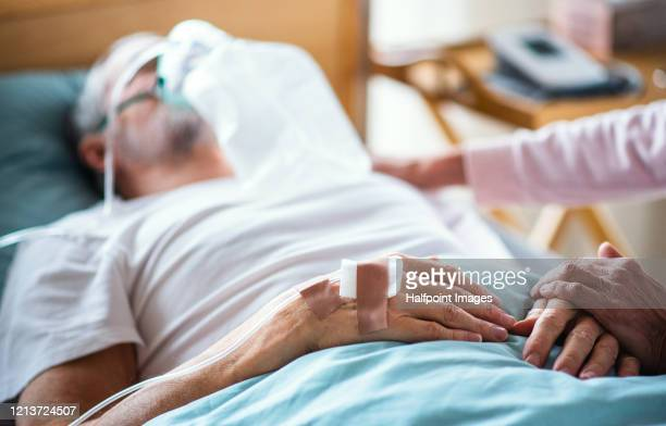 a senior ill man in hospital bed, his wife holding his hand. - respiratory machine stock pictures, royalty-free photos & images