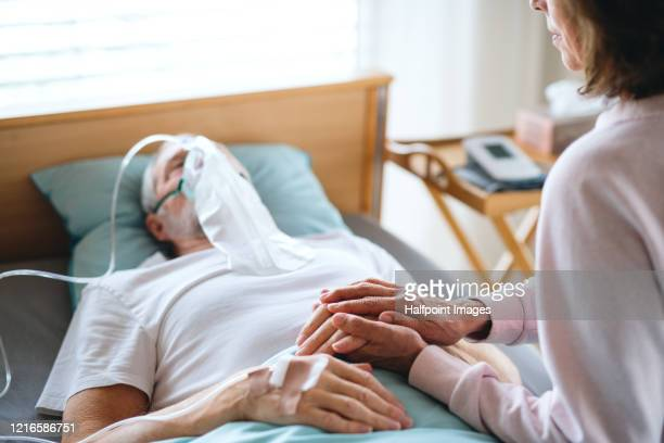 a senior ill man in hospital bed, his wife holding his hand. - respiratory disease stock pictures, royalty-free photos & images