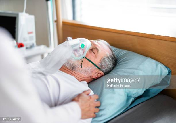 a senior ill man in hospital bed, his wife holding his shoulder. - patient on ventilator stock pictures, royalty-free photos & images