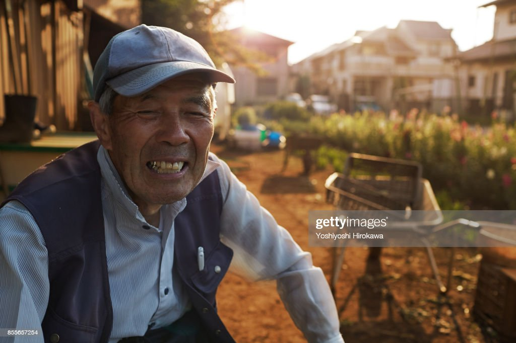 Senior Japanese working early in the morning : Stock Photo