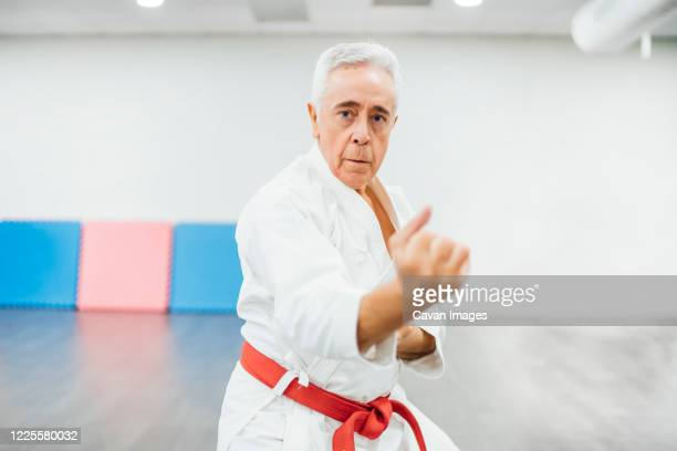 senior karate master performing combat techniques - arte marziale foto e immagini stock