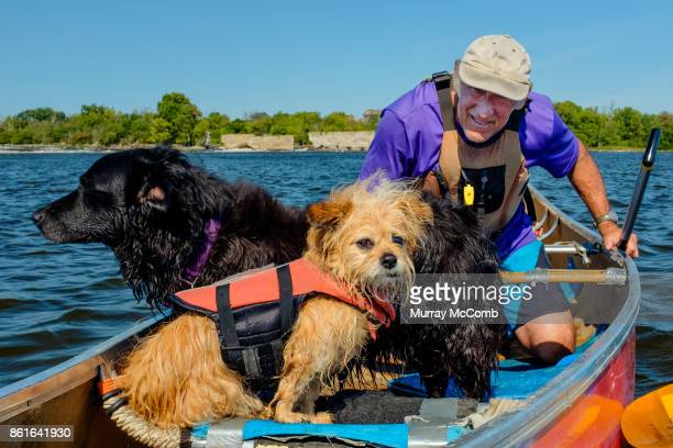 senior male canoeist giving pep talk to dogs before the rapids - murray mccomb stock pictures, royalty-free photos & images