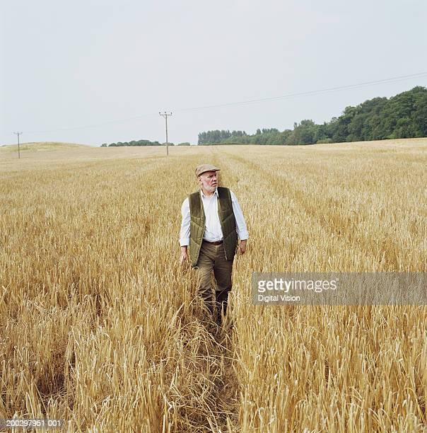 Senior male farmer walking through barley field
