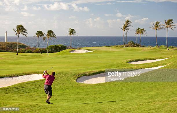 Senior Male Golfer on Tropical Golf Course in Hawaii