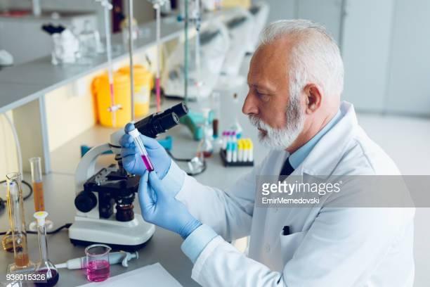 Senior male scientist is working in laboratory