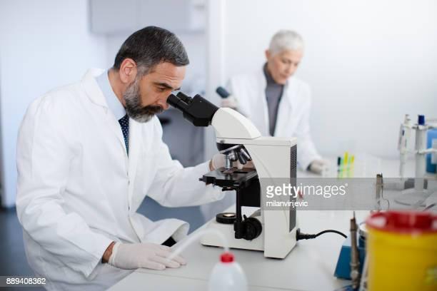 顕微鏡を通して見る男性主幹