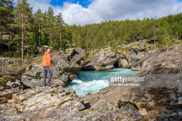 senior male standing on a rock watching the river at ridderspranget norway - finn bjurvoll stock pictures, royalty-free photos & images