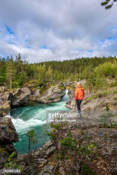 senior male standing on a rock watching the river at ridderspranget norway - finn bjurvoll stock-fotos und bilder