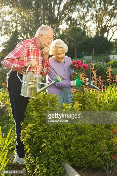 Senior man and woman gardening