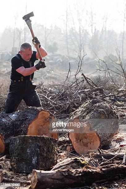 Senior man chopping tree