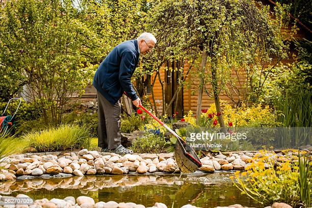 Senior man cleaning fish pond