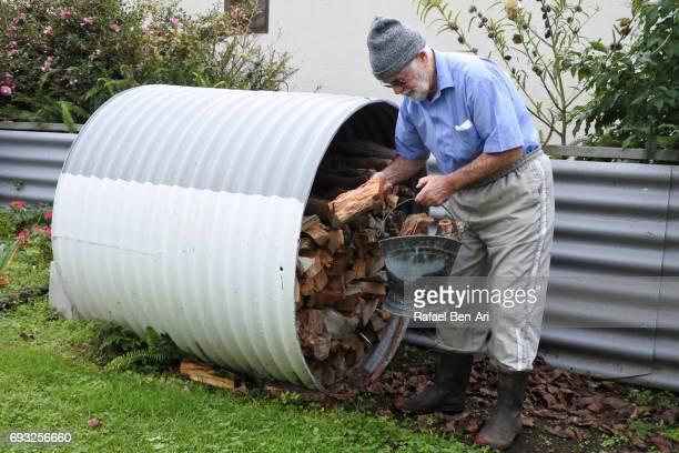 Senior man collecting  firewood