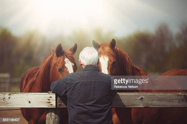 senior man connecting with his horses