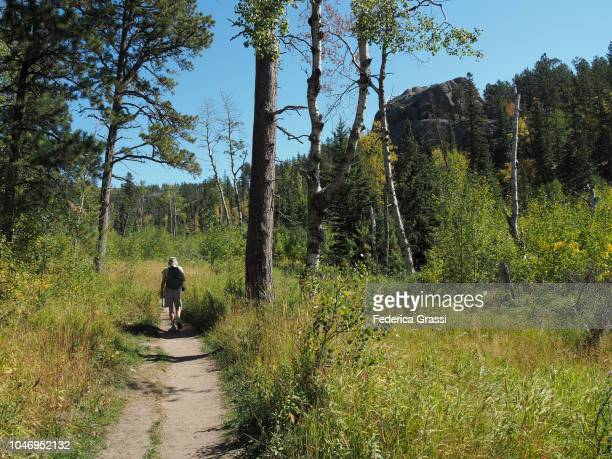 senior man hiking along little devils tower trail, custer state park - black hills - fotografias e filmes do acervo