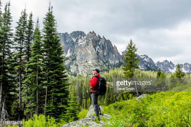 senior man hiking by mountain in stanley, idaho, usa - idaho stock pictures, royalty-free photos & images