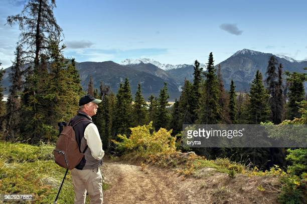 senior man hiking in kluane national park, yukon,canada - nature reserve stock pictures, royalty-free photos & images