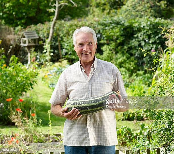 senior man in garden holding marrow. - marrow squash stock pictures, royalty-free photos & images