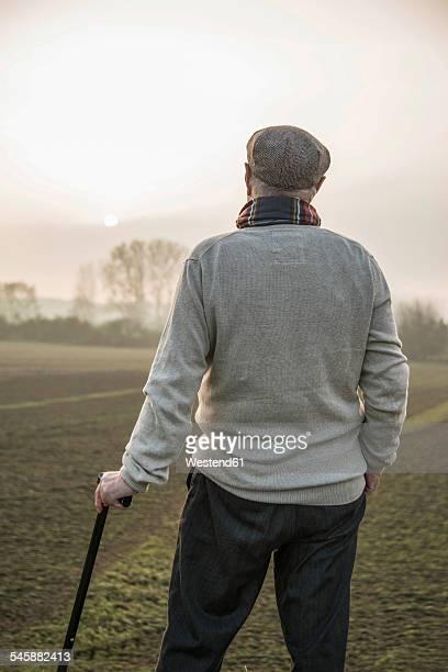 senior man in rural landscape looking at view - フラットキャップ ストックフォトと画像