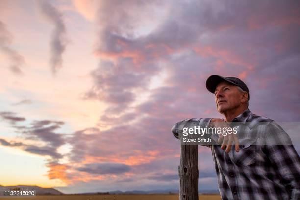 senior man leaning on fence post at sunset - coluna de madeira - fotografias e filmes do acervo