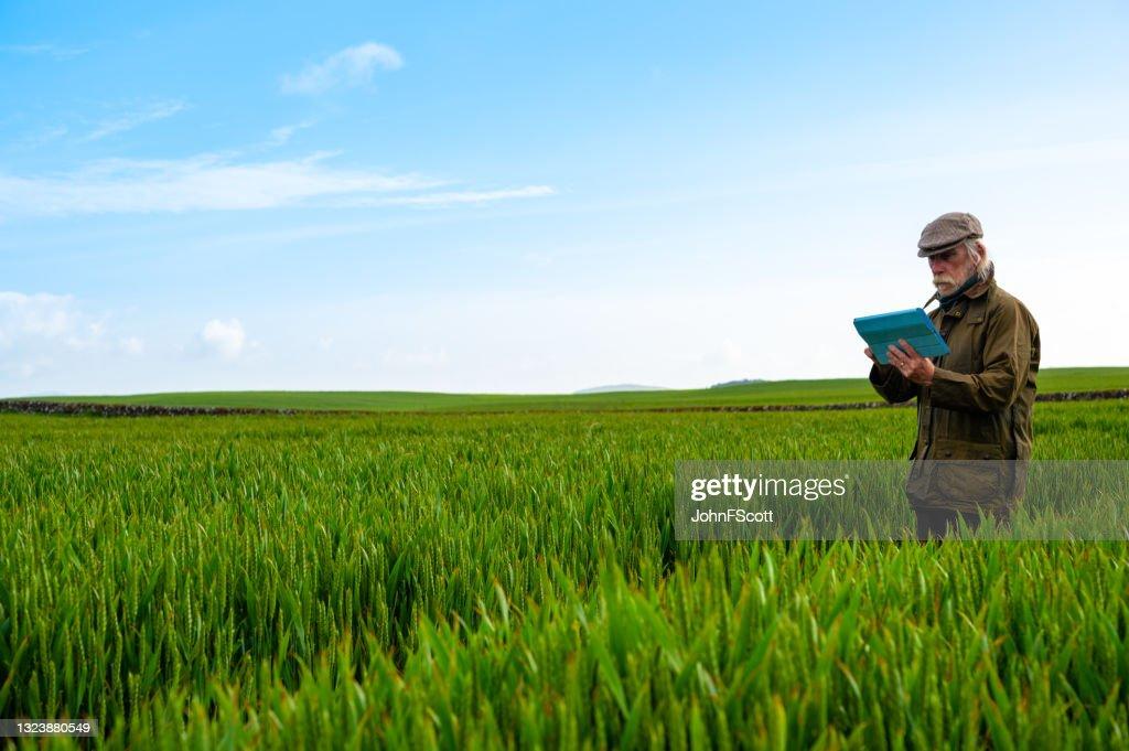 Senior man looking at his digital tablet : Stock Photo