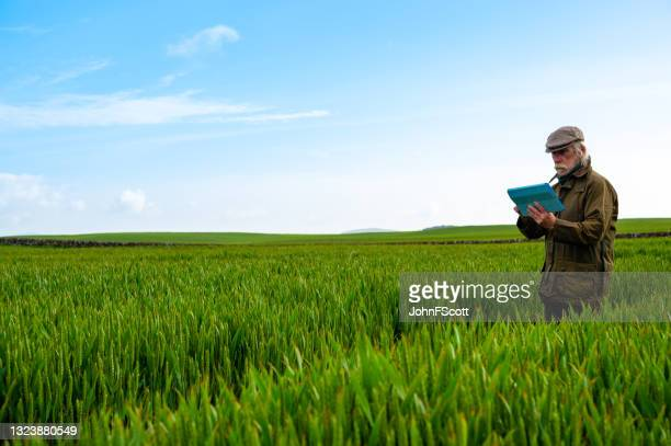 senior man looking at his digital tablet - johnfscott stock pictures, royalty-free photos & images