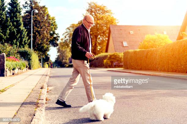 Senior man loves his dog and walks with it while the sun shines