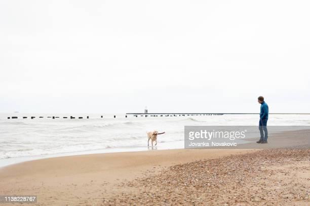 Senior Man Playing Fetch with Dog on Beach
