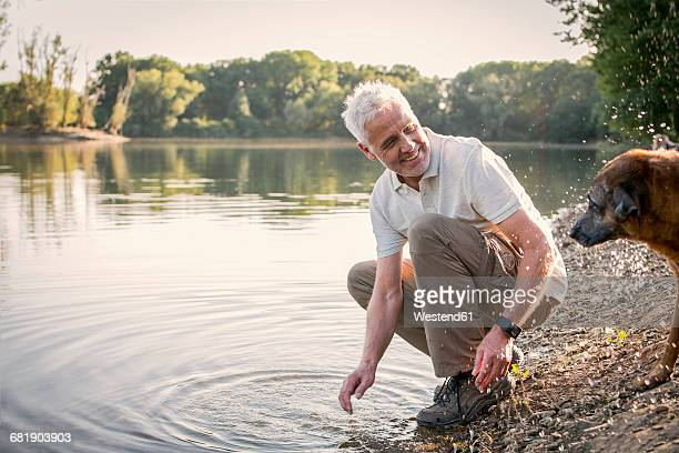 senior man playing with dog at a lake - mann 60 jahre stock-fotos und bilder