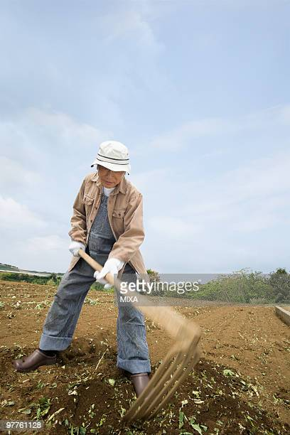 Senior man plowing field